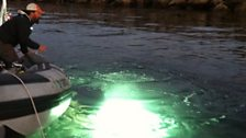 Dive supervisor Scott Carnahan checks out a mysterious glow in the water beneath the boat