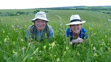 Charlotte Smith in a typical Transylvanian wildflower meadow with botanist Dr John Akeroyd.