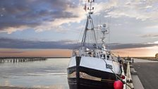 Fidelity in  Amble harbour