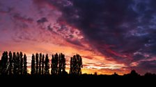 Thornaby sunset