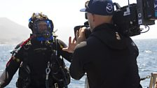 Steve Backshall gets ready for his dive with the sea lions.