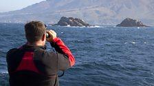 Steve Backshall gets a closer look at his dive site