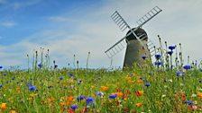 Whitburn Windmill