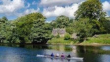 Rowers at Tyne Green, Hexham