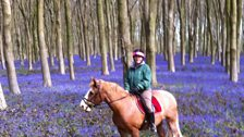 Julie in Kingsworthy emailed this photo of a rider in the woods