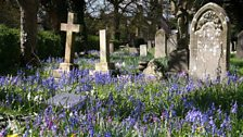 Southampton Old Cemetery - sent by Colin