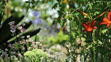 "Best Evolution Garden - ""Plant Evolution"" designed by Michael Vinsun"