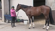 Racehorse Power Struggle