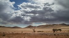 Namibia's arid gravel plains are so incredibly hot that rain often evaporates before it hits the ground.