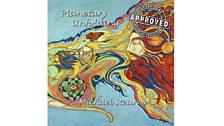 Michael Stearns - Planetary Unfolding