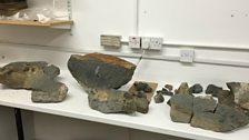 Rocks containing dinosaur fossils in Dr Steve Brusatte's lab.