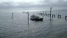 Calm shores in Belize