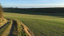 English countryside winter walks