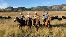 Mexican vaqueros (cowboys) – cattle ranching