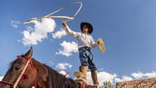 A Mexican charro or cowboy practices roping skills on his horse