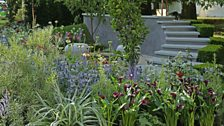 On The Edge: The Centre for Mental Health Garden: Silver-gilt medal