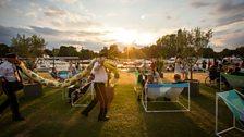 Henley Festival: Snake