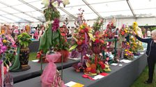 Judging in the Horticulture Tent