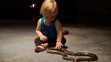 Babies with snakes