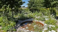 This silver medal winning garden features a continuous path which encourages the visitor to get lost in walking