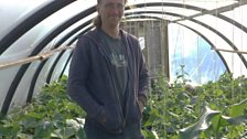 Alan Robertson photographed inside one of the poly tunnels at Transition Turriefield.