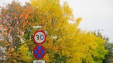 Yr Hydref ar yr A55 - Tudur Aled Davies Llanelwy.