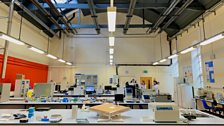 A former gymnasium converted into an analytical chemistry lab