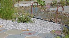 The Urban Pollinator Garden, designed by Caitlin McLaughlin - Silver-gilt medal