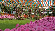 A glorious RHS welcome to Hampton Court 2019