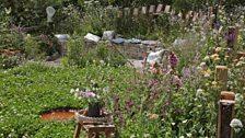 The BBC Springwatch Garden, designed by Jo Thompson