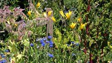 The Wild Garden, designed by Rossana Porta
