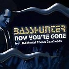 Now You're Gone (feat. Dj Mental Theo)