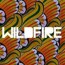 Wildfire (feat. Little Dragon)