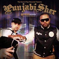 Punjabi Sher (feat. Bakshi Billa)