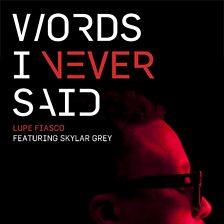 Words I Never Said (feat. Skylar Grey )