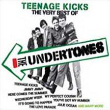 Teenage Kicks   The Very Best Of