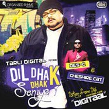 Dil Dhak Dhak Soniye (feat. Des C & Cheshire)