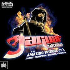 Jaguar Skills & His Amazing Friends   1