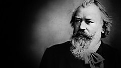 Johannes Brahms - chamber and instrumental works