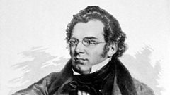 Franz Schubert - his friends and lifestyle