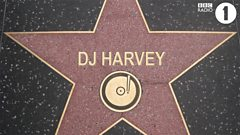 DJ Harvey - Hall Of Fame