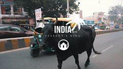 Peasant's King India Tour Diary - Part 1