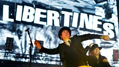 """Peter Doherty: """"I have 40 typewriters and I'm not ashamed of it"""""""
