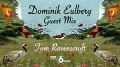 Dominik Eulberg Mix for Tom