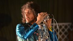 Wayne Coyne: Why Should We Embrace Fear?