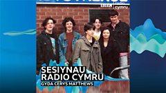 Gorky's Zygotic Mynci (1994)