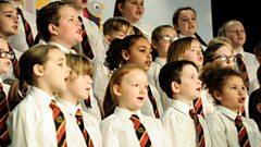 Ballykeel Primary School -  Circle of Life