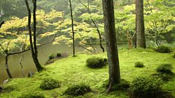 how to make the perfect japanese garden - The Garden Of Evening Mists