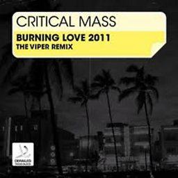 Burning Love (The Viper Remix)