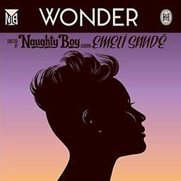 Wonder (feat. Emeli Sande)